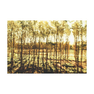 bright Forest Stretched Canvas Prints