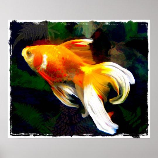 Bright Golden Koi in Dark Fish Pond Poster
