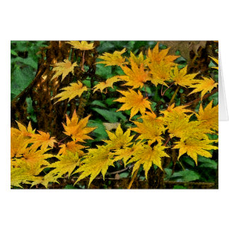 """BRIGHT, GOLDEN STAR-LIKE LEAVES"" NOTECARD(PHOTOG) NOTE CARD"