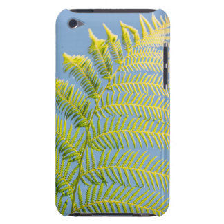 Bright Green Fern On A Blue Background iPod Touch Case-Mate Case