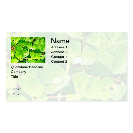 Bright Green Leaves with Raindrops Business Cards