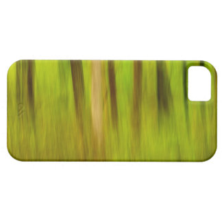 Bright Green Summer Abstract iPhone 5 Covers