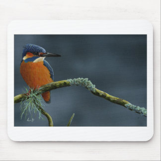 Bright Kingfisher gifts Mouse Pad