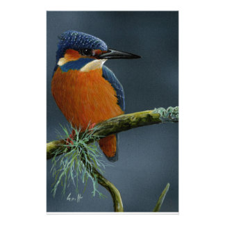 Bright Kingfisher gifts Stationery