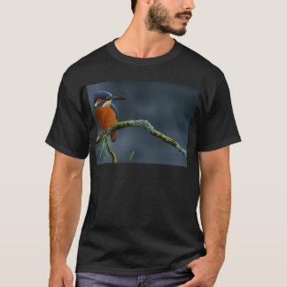 Bright Kingfisher gifts T-Shirt