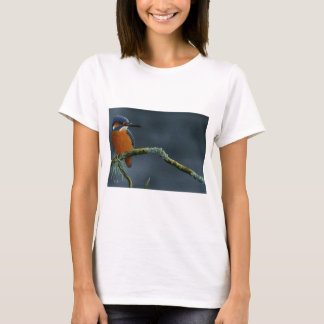 Bright Kingfisher gifts T-Shirt