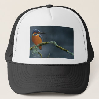 Bright Kingfisher gifts Trucker Hat