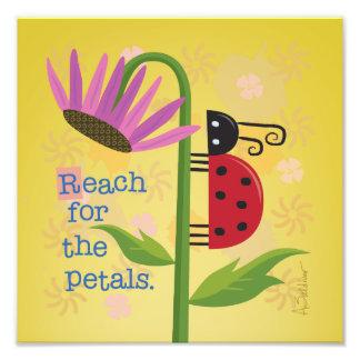 Bright Ladybug on Purple Flower Square Art Print Photo