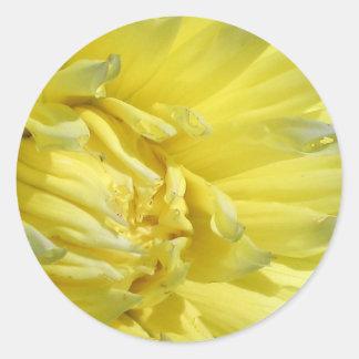 Bright, Lemon Yellow Dahlia Round Sticker