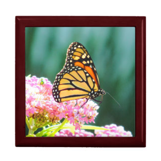 Bright Monarch Butterfly Wood Jewelry Box