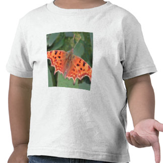 Bright orange butterfly. Comma. T-shirts