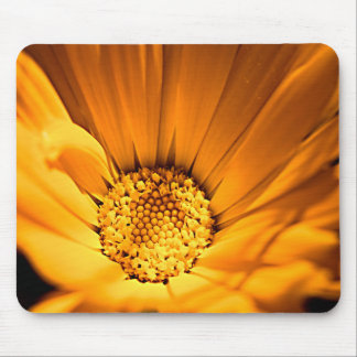 Bright Orange Daisy Mouse Pad