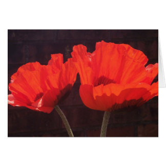 Bright Orange Poppies Greeting Card