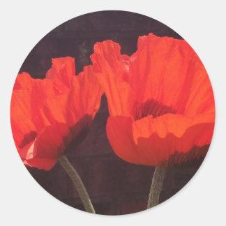 Bright Orange Poppies Round Sticker