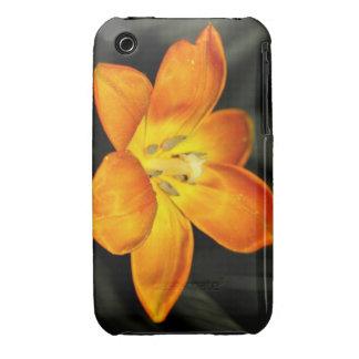 Bright Orange Tulip iPhone 3 Case