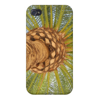 Bright Palm iPhone 4 Case