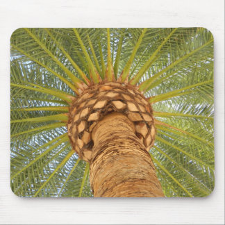 Bright Palm Mouse Pad
