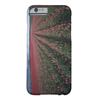 Bright pink and red tulips glow under dark barely there iPhone 6 case