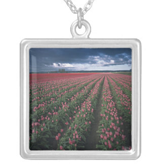 Bright pink and red tulips glow under dark square pendant necklace