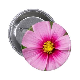bright pink daisy 6 cm round badge