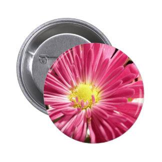 Bright Pink Daisy Flower 6 Cm Round Badge