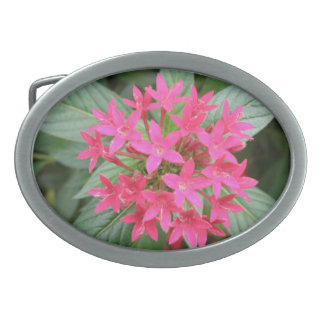 Bright Pink Tropical Flowers Belt Buckle