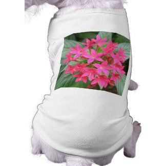 Bright Pink Tropical Flowers Dog Clothing