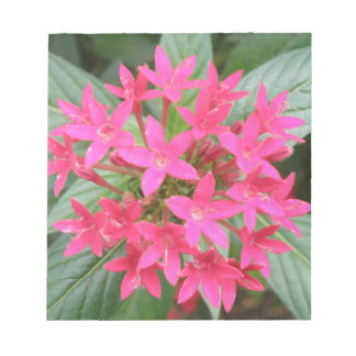 Bright Pink Tropical Flowers Notepad
