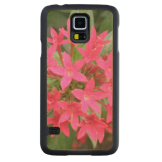 Bright Pink Tropical Flowers Wooden Phone Case