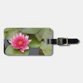 Bright Pink Water Lily Flower Bag Tags