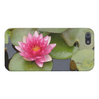 Bright Pink Water Lily Flower iPhone 5/5S Case