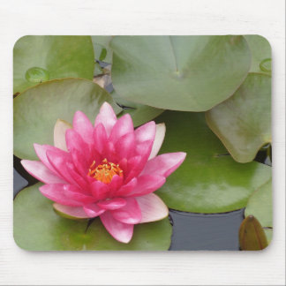 Bright Pink Water Lily Flower Mousepad