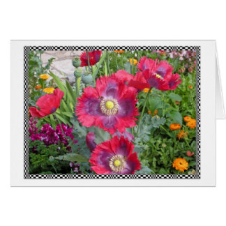 Bright Poppies Card