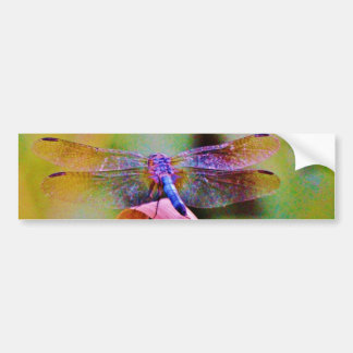 Bright Rainbow Pink Dragonfly Bumper Sticker