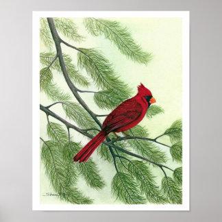 Bright Red Cardinal - Print