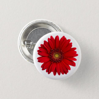 Bright Red Gerbera Daisy Flower 3 Cm Round Badge