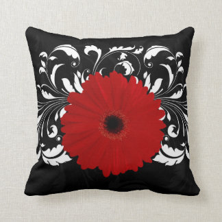 Bright Red Gerbera Daisy on Black Cushion