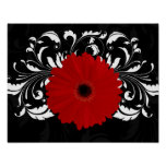 Bright Red Gerbera Daisy on Black Poster