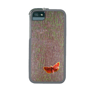 Bright red orange butterfly on natural tree bark iPhone 5 cover