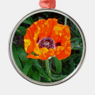 Bright red poppy christmas ornament