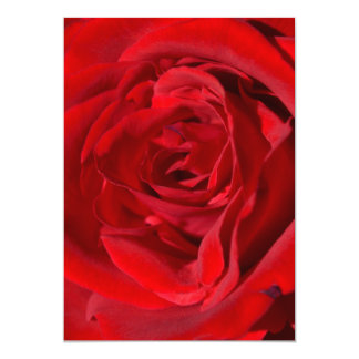 Bright Red Rose Invitations
