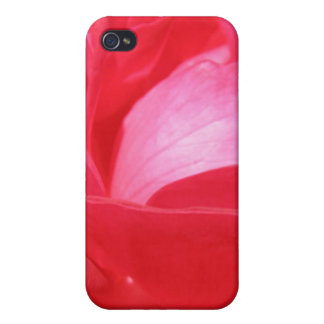 Bright Red Rose Macro iPhone 4/4S Covers