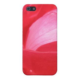 Bright Red Rose Macro iPhone 5 Case