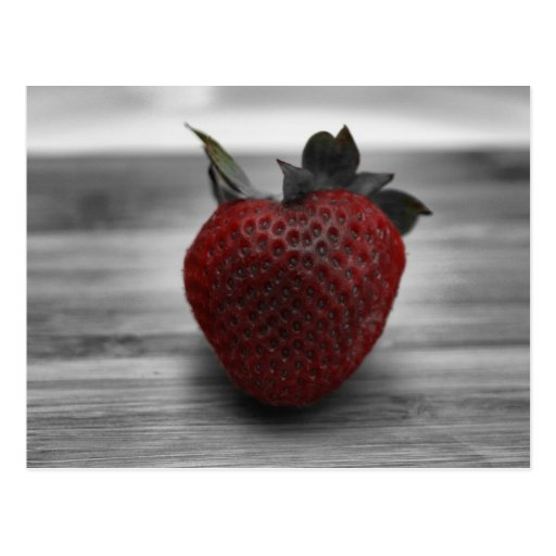 Bright Red Strawberry on Black and White Postcards