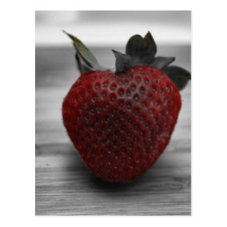 Bright Red Strawberry on Black and White Postcard