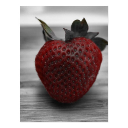 Bright Red Strawberry on Black and White Post Cards