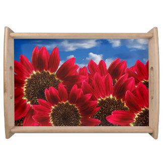 Bright Red Wildflowers Serving Platter
