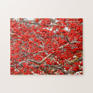 Bright Red Winterberries Holly Tree Berries Puzzles