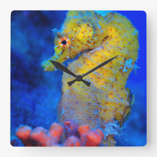 Bright Seahorse | Hippocampus Square Wall Clock