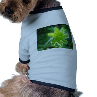 Bright sheet with water drops doggie t shirt